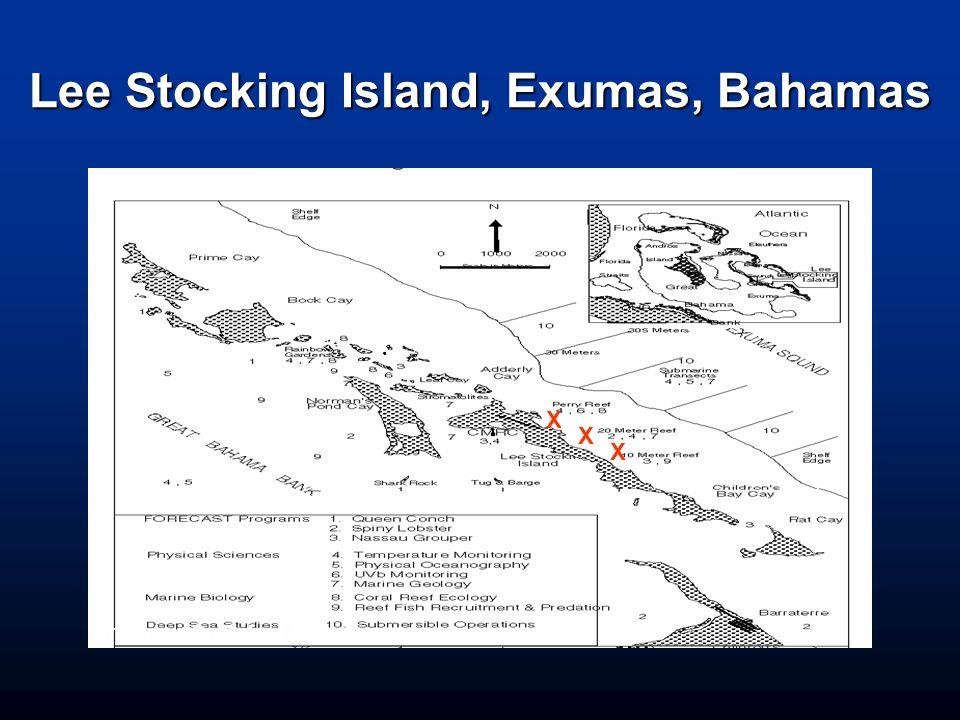 Lee Stocking Island, Exumas, Bahamas ggggg X X Photo by: Dr. Robert Jonas X