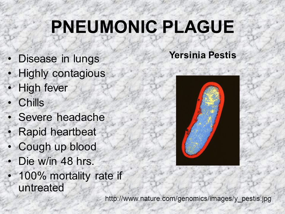PLAGUE SORE OR BUBOE http://www.insecta-inspecta.com/fleas/bdeath/Black.html