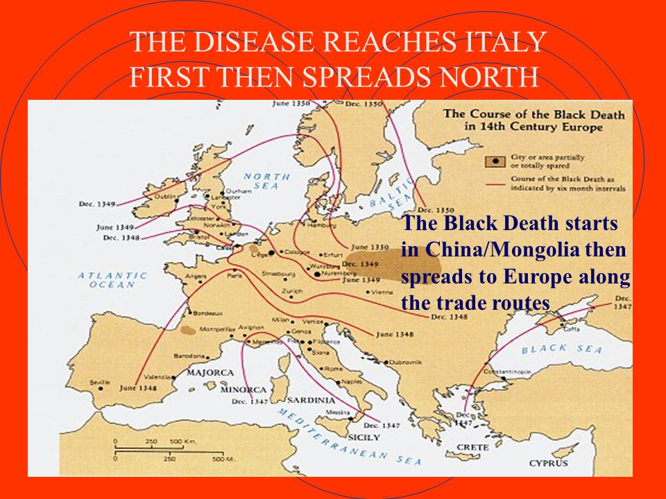 THE DISEASE REACHES ITALY FIRST THEN SPREADS NORTH The Black Death starts in China/Mongolia then spreads to Europe along the trade routes