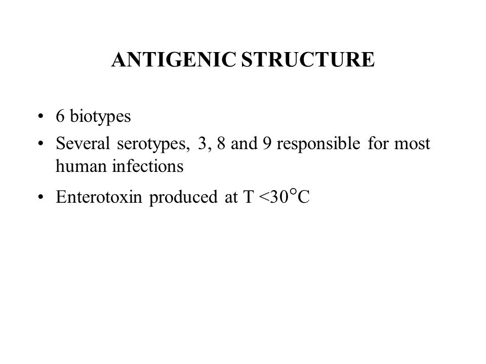 ANTIGENIC STRUCTURE 6 biotypes Several serotypes, 3, 8 and 9 responsible for most human infections Enterotoxin produced at T <30  C