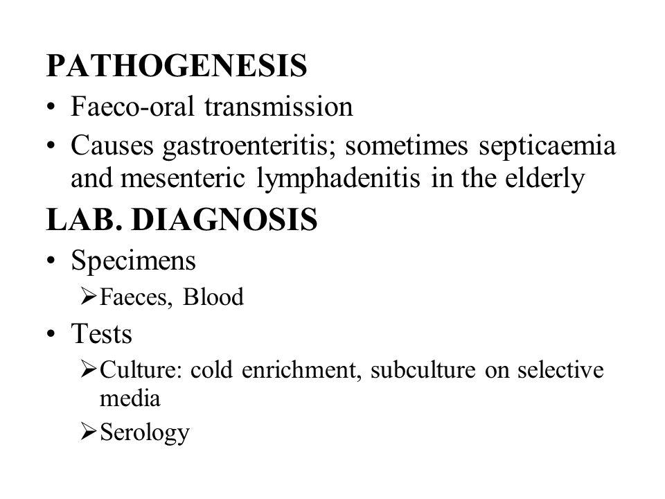 PATHOGENESIS Faeco-oral transmission Causes gastroenteritis; sometimes septicaemia and mesenteric lymphadenitis in the elderly LAB. DIAGNOSIS Specimen