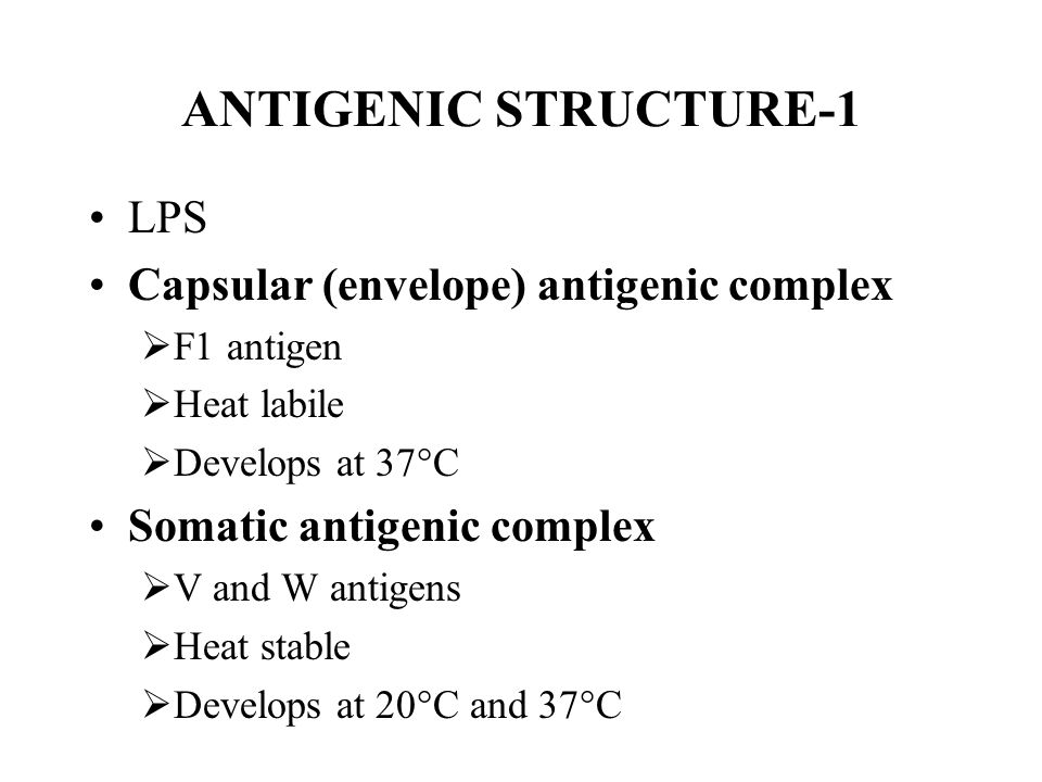 ANTIGENIC STRUCTURE-1 LPS Capsular (envelope) antigenic complex  F1 antigen  Heat labile  Develops at 37  C Somatic antigenic complex  V and W antigens  Heat stable  Develops at 20  C and 37  C