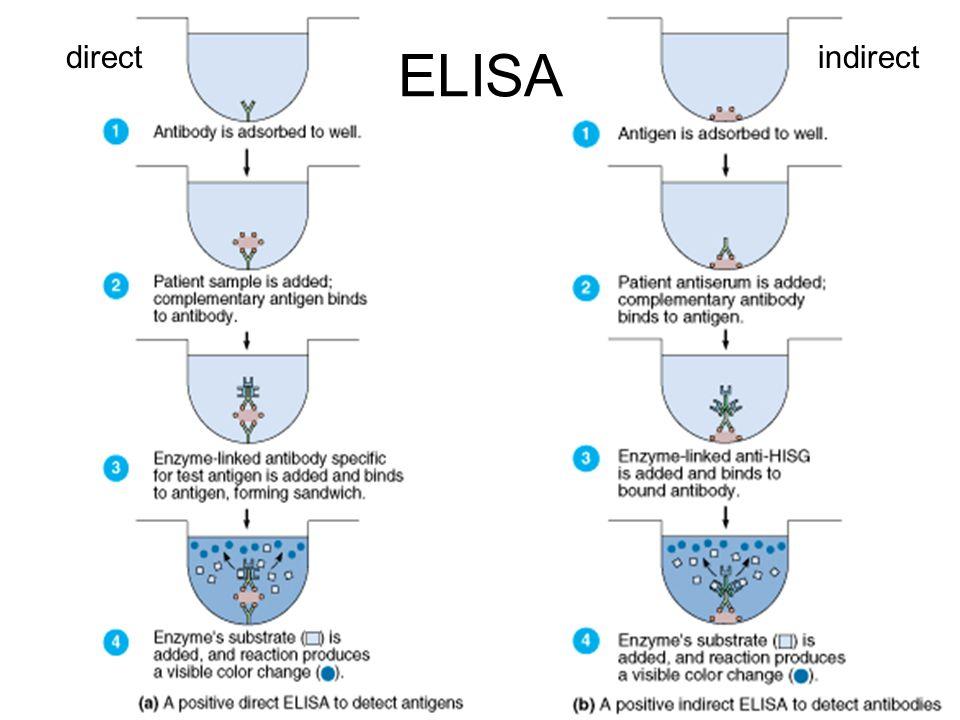 ELISA directindirect