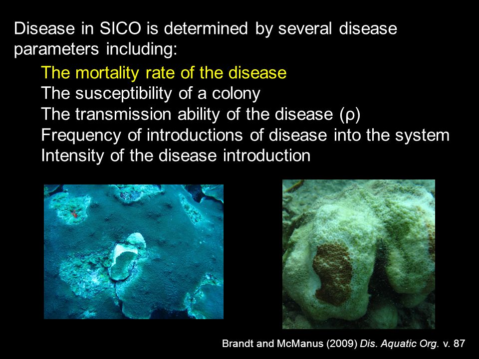 Disease in SICO is determined by several disease parameters including: Brandt and McManus (2009) Dis. Aquatic Org. v. 87 The mortality rate of the dis