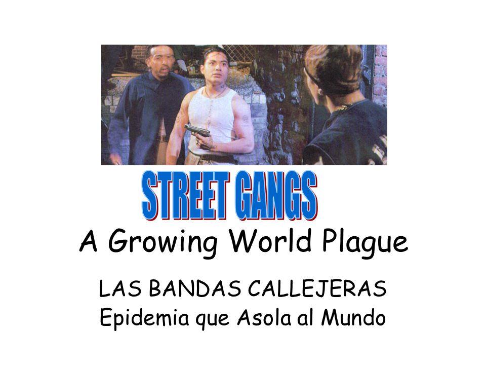 Why do so many youngsters join gangs.A que se debe que tantos jovenes se unan a las pandillas.