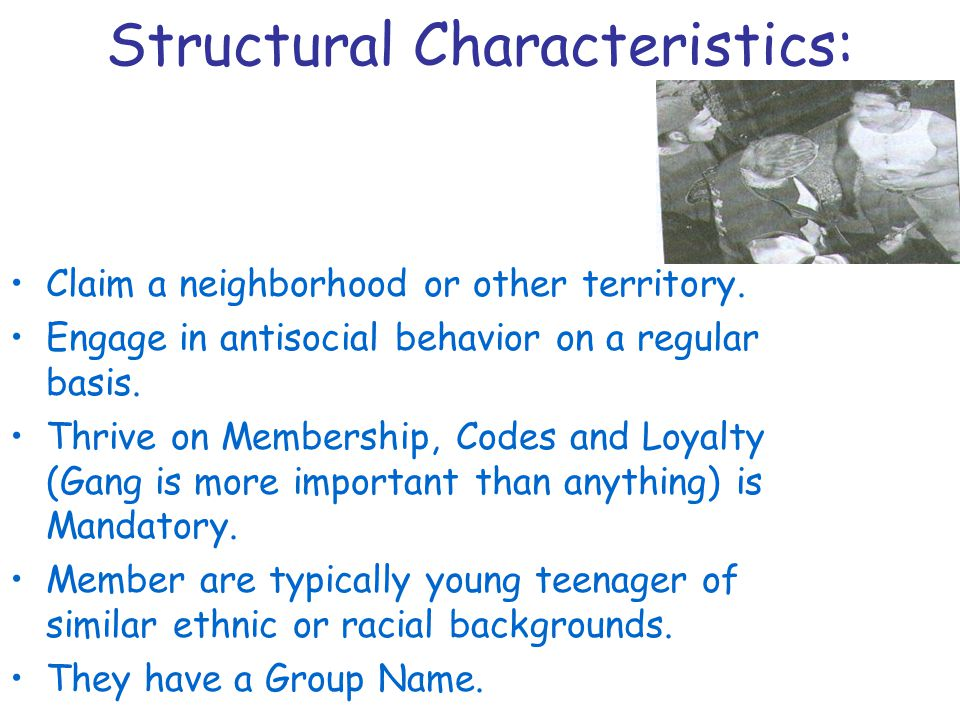 Structural Characteristics: Claim a neighborhood or other territory.