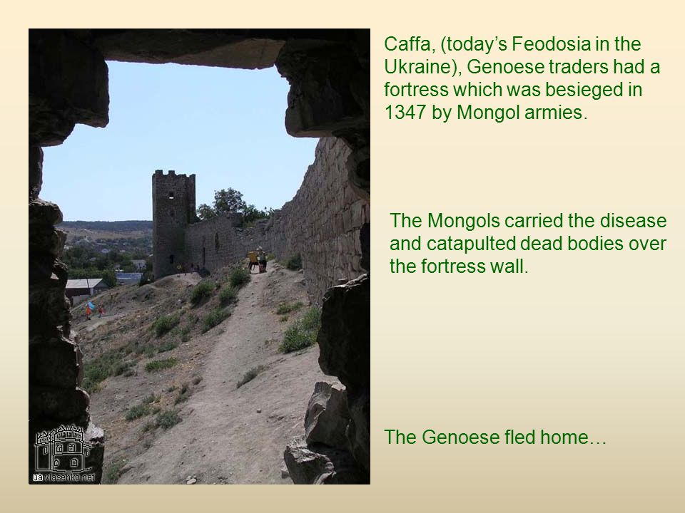 Caffa, (today's Feodosia in the Ukraine), Genoese traders had a fortress which was besieged in 1347 by Mongol armies.