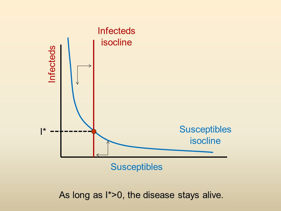 Infecteds isocline Susceptibles isocline Infecteds Susceptibles I* As long as I*>0, the disease stays alive.