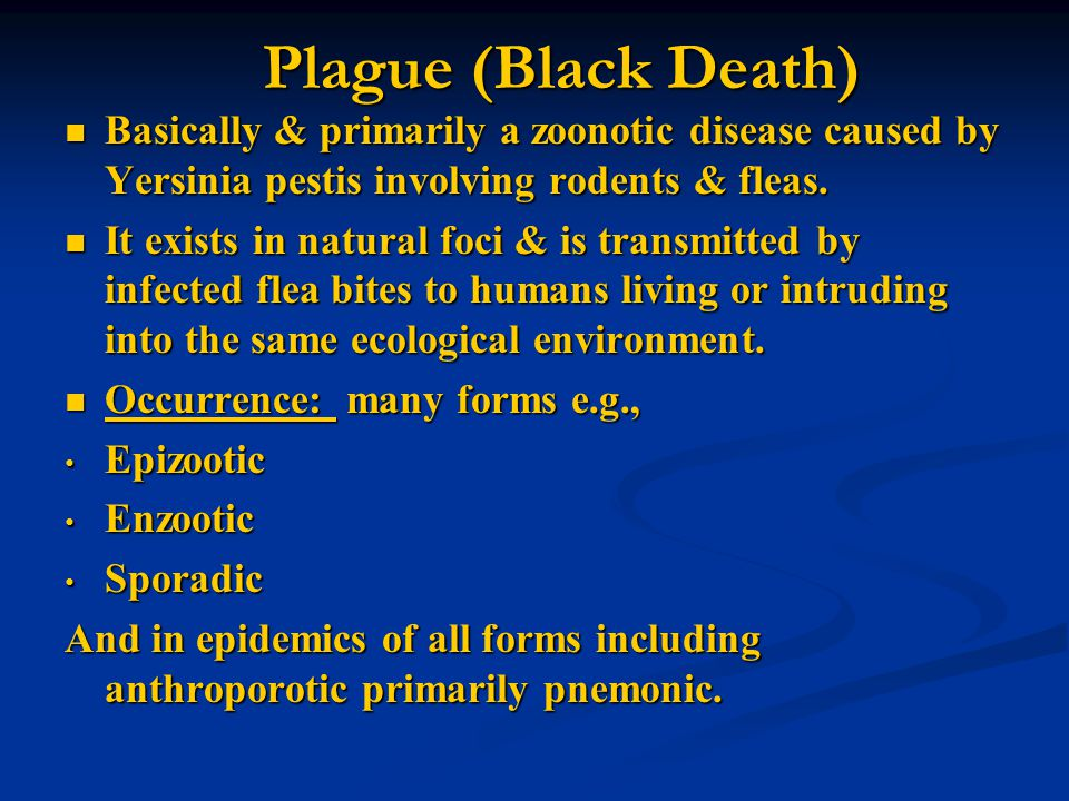 Plague (Black Death) Basically & primarily a zoonotic disease caused by Yersinia pestis involving rodents & fleas. Basically & primarily a zoonotic di