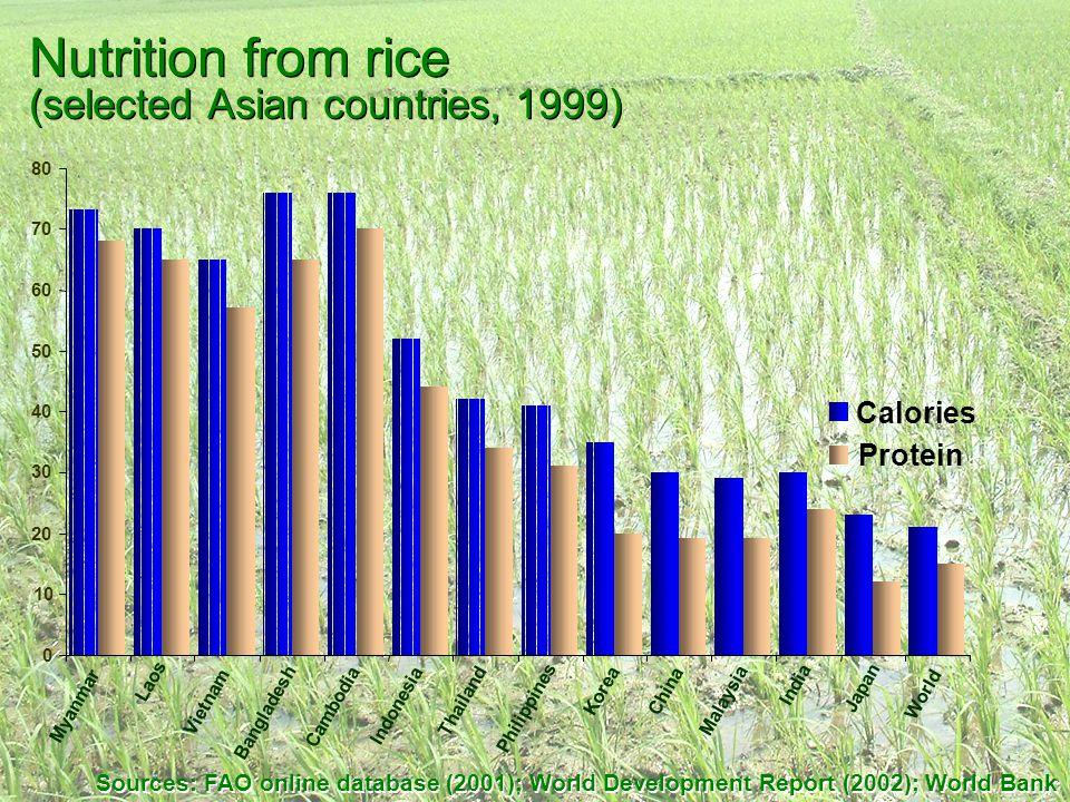Nutrition from rice (selected Asian countries, 1999) Sources: FAO online database (2001); World Development Report (2002); World Bank 0 10 20 30 40 50