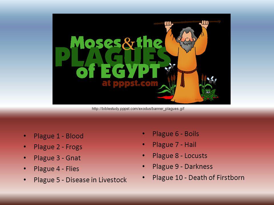 http://biblestudy.pppst.com/exodus/banner_plagues.gif Plague 1 - Blood Plague 2 - Frogs Plague 3 - Gnat Plague 4 - Flies Plague 5 - Disease in Livestock Plague 6 - Boils Plague 7 - Hail Plague 8 - Locusts Plague 9 - Darkness Plague 10 - Death of Firstborn