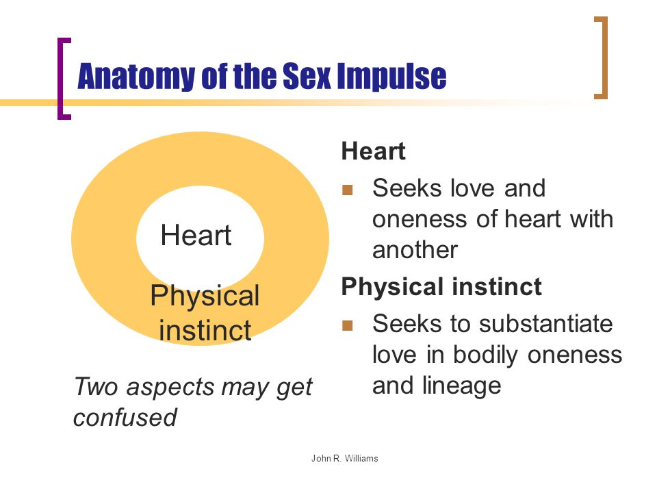 John R. Williams Anatomy of the Sex Impulse Heart Seeks love and oneness of heart with another Physical instinct Seeks to substantiate love in bodily
