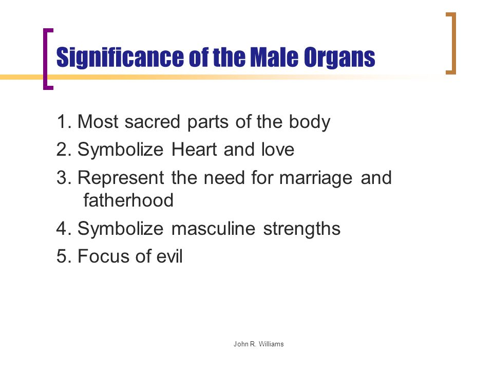Significance of the Male Organs 1. Most sacred parts of the body 2.