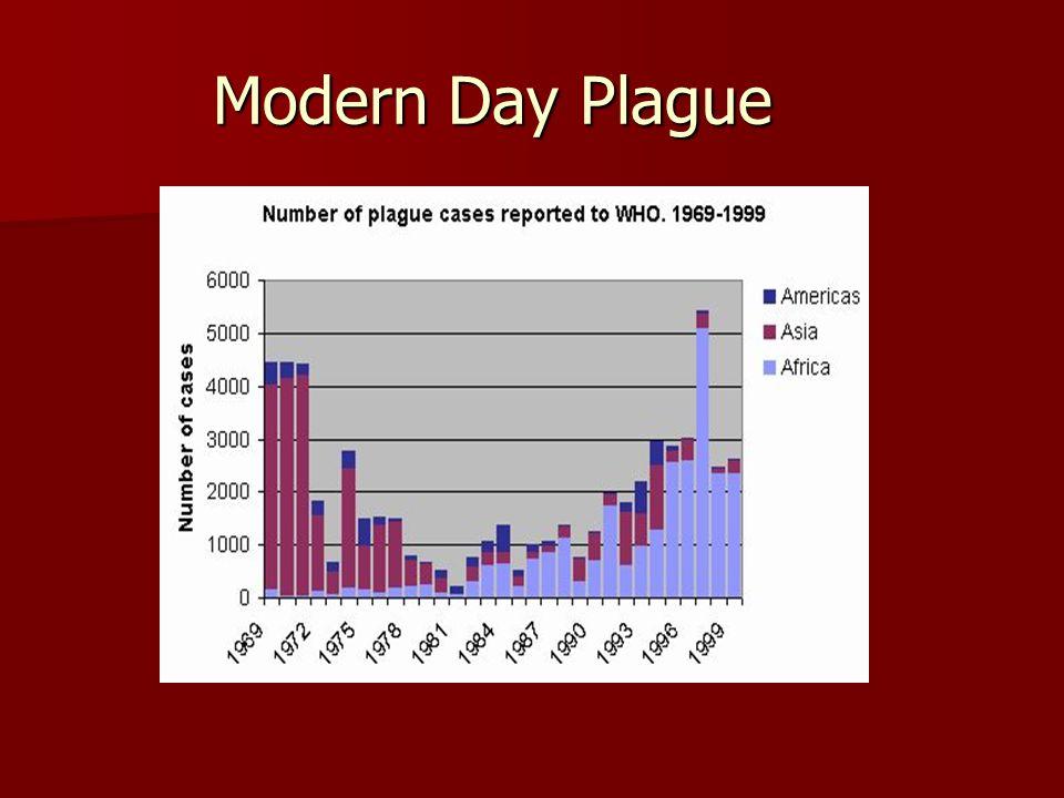 Modern Day Plague