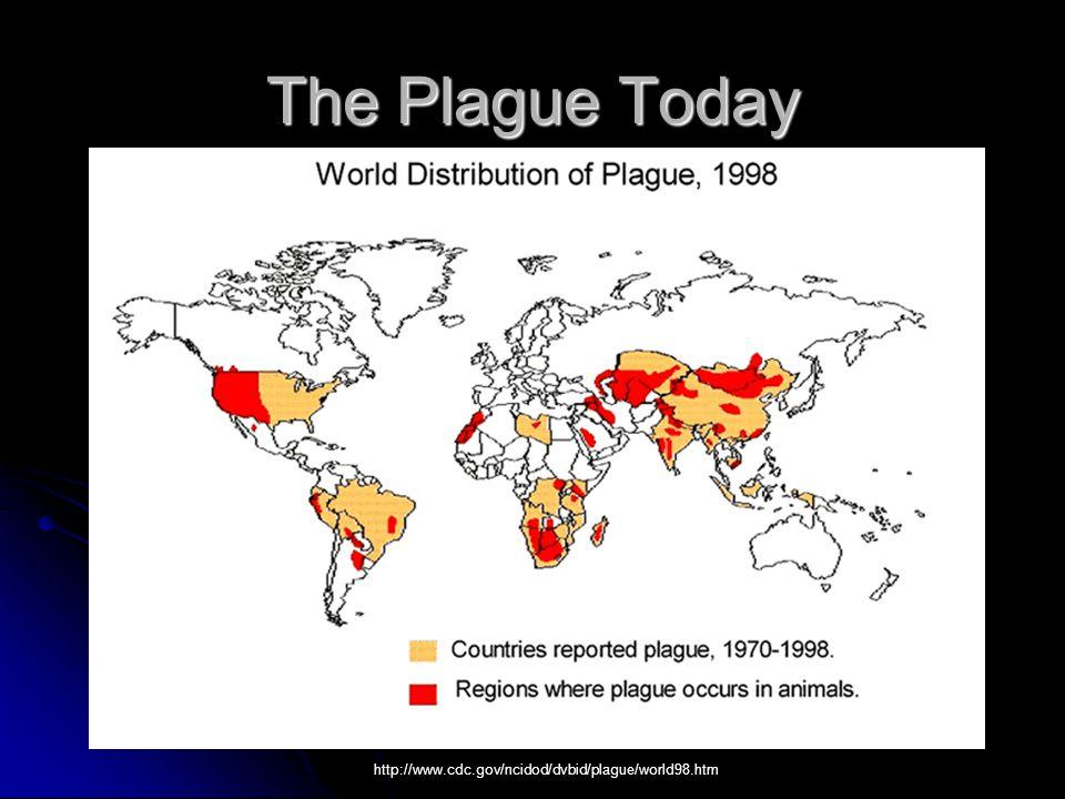 The Plague Today http://www.cdc.gov/ncidod/dvbid/plague/world98.htm