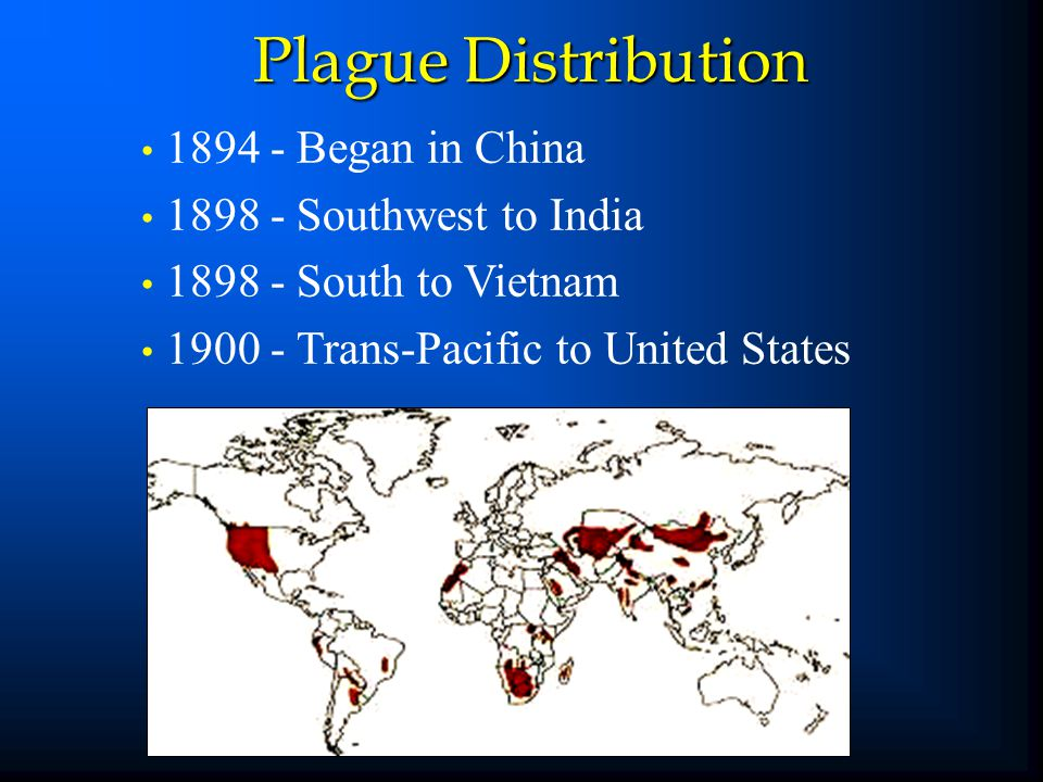 Plague Distribution 1894 - Began in China 1898 - Southwest to India 1898 - South to Vietnam 1900 - Trans-Pacific to United States