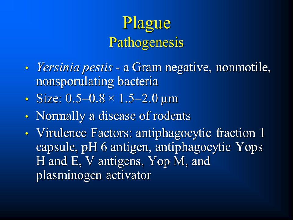 Plague Pathogenesis Yersinia pestis - a Gram negative, nonmotile, nonsporulating bacteria Yersinia pestis - a Gram negative, nonmotile, nonsporulating