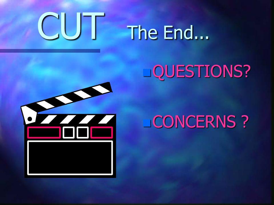 CUT The End... n QUESTIONS? n CONCERNS ?