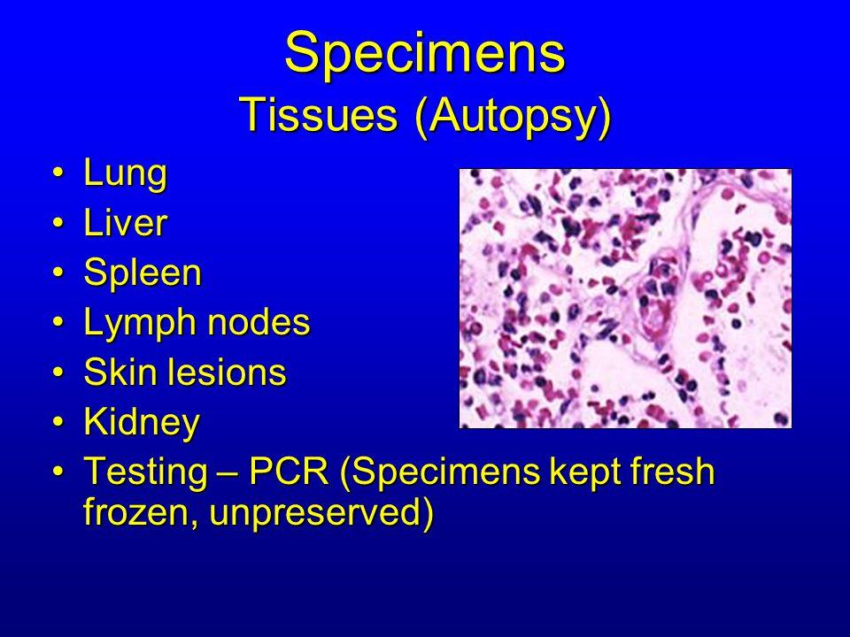 Specimens Tissues (Autopsy) LungLung LiverLiver SpleenSpleen Lymph nodesLymph nodes Skin lesionsSkin lesions KidneyKidney Testing – PCR (Specimens kept fresh frozen, unpreserved)Testing – PCR (Specimens kept fresh frozen, unpreserved)
