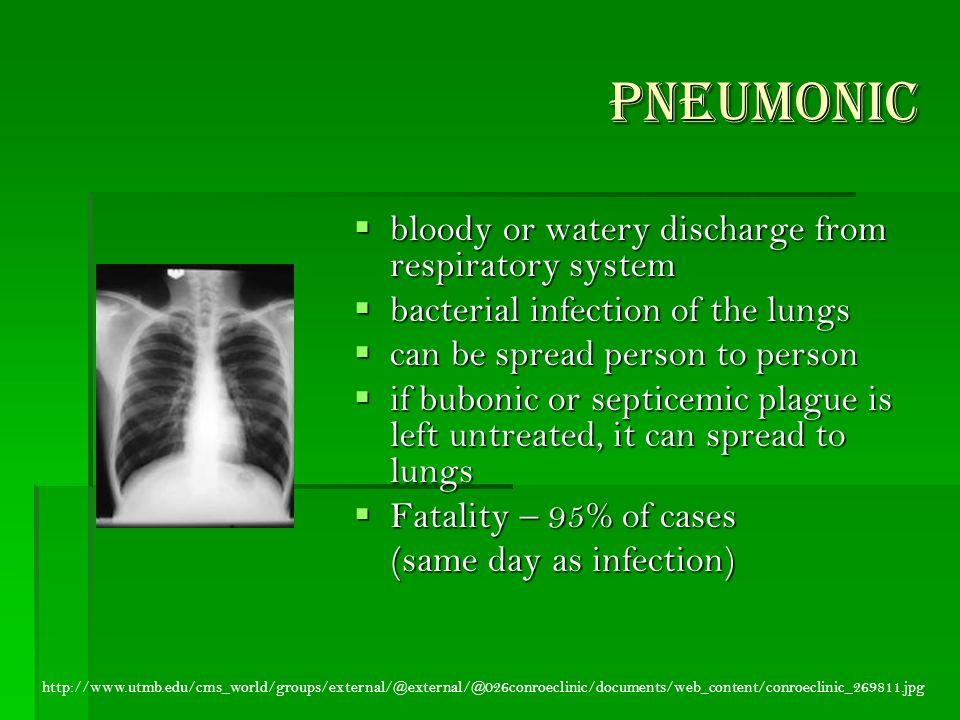 Pneumonic  bloody or watery discharge from respiratory system  bacterial infection of the lungs  can be spread person to person  if bubonic or septicemic plague is left untreated, it can spread to lungs  Fatality – 95% of cases (same day as infection) (same day as infection) http://www.utmb.edu/cms_world/groups/external/@external/@026conroeclinic/documents/web_content/conroeclinic_269811.jpg