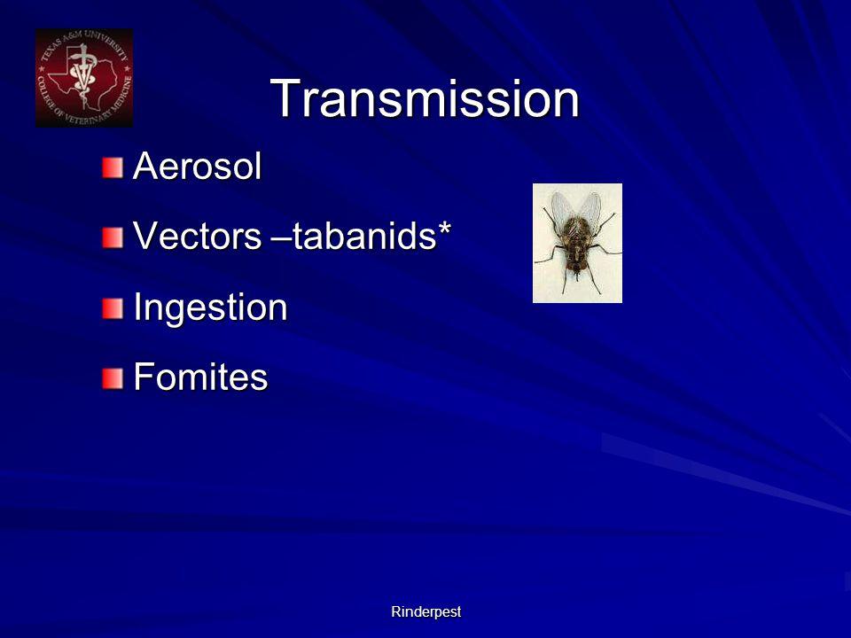 Rinderpest Transmission Aerosol Vectors –tabanids* IngestionFomites