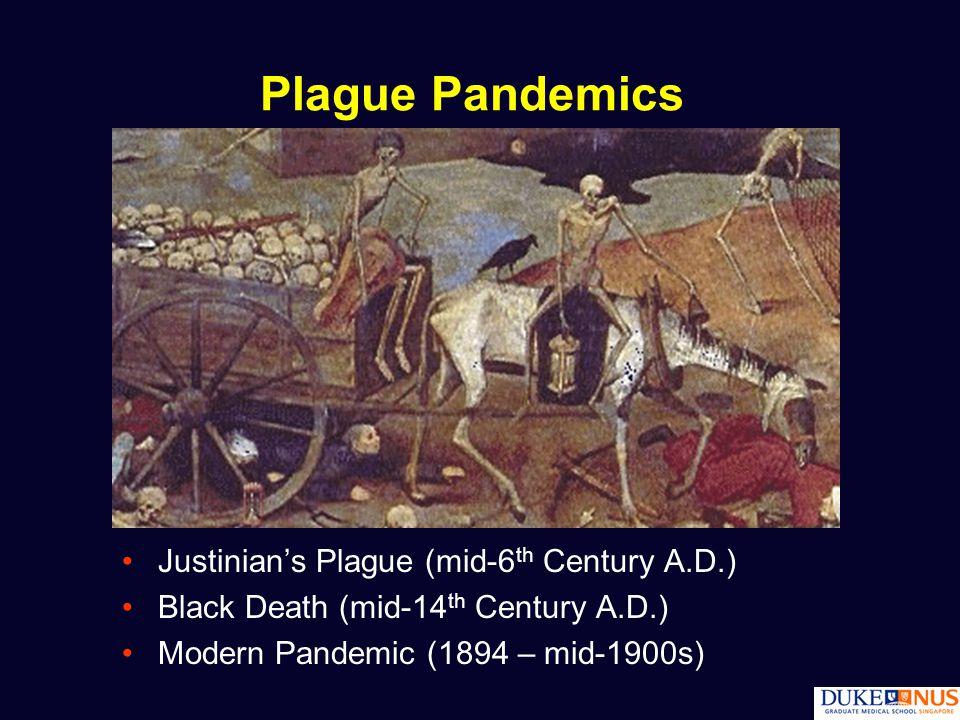 Plague Pandemics Justinian's Plague (mid-6 th Century A.D.) Black Death (mid-14 th Century A.D.) Modern Pandemic (1894 – mid-1900s)
