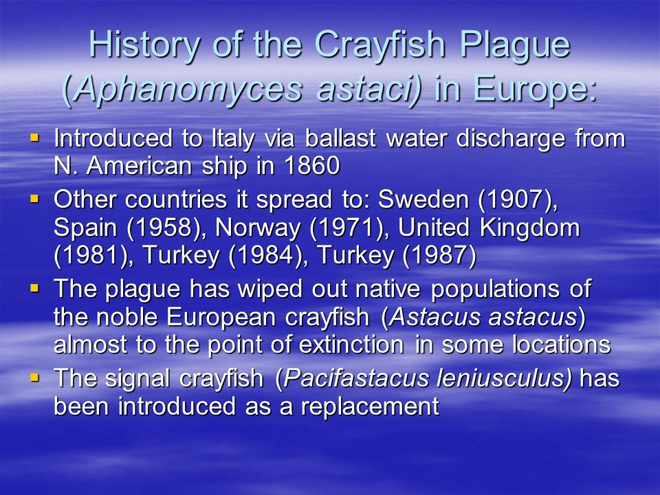 References  http://en.wikipedia.org/wiki/Crayfish_plague http://en.wikipedia.org/wiki/Crayfish_plague  http://other-invertebrates.suite101.com/article.cfm/european_crayfish http://other-invertebrates.suite101.com/article.cfm/european_crayfish  http://www.mimbon.de/archiv16/01.jpg (noble crayfish image) http://www.mimbon.de/archiv16/01.jpg  http://www.naturephoto-cz.eu/jokirapu-pic-2514.html (noble crayfish image) http://www.biol.pmf.hr/rakovi/images/A%20astacus%20aa.jpg (noble crayfish image) http://www.naturephoto-cz.eu/jokirapu-pic-2514.html http://www.biol.pmf.hr/rakovi/images/A%20astacus%20aa.jpg http://www.naturephoto-cz.eu/jokirapu-pic-2514.html http://www.biol.pmf.hr/rakovi/images/A%20astacus%20aa.jpg  http://www.iucnredlist.org/search/details.php/2191/summ http://www.iucnredlist.org/search/details.php/2191/summ  http://en.wikipedia.org/wiki/Astacus_astacus http://en.wikipedia.org/wiki/Astacus_astacus  http://www.naturephoto-cz.eu/astacus-astacus-picture-2507.html (noble crayfish image on title page) http://www.naturephoto-cz.eu/astacus-astacus-picture-2507.html  http://www.boatnerd.com/news/newpictures02/paulrtregurtha6-01-02mn-pg.jpg (Great Lakes freighter) http://www.boatnerd.com/news/newpictures02/paulrtregurtha6-01-02mn-pg.jpg  http://www.dlc.fi/~marianna/gourmet/crayfish.htm http://www.dlc.fi/~marianna/gourmet/crayfish.htm  http://images.google.com/imgres?imgurl=http://www.disease- watch.com/documents/CD/index/images/cp1.jpg&imgrefurl=http://www.disease- watch.com/documents/CD/index/html/cp001cra.htm&h=170&w=263&sz=12&hl=en&start=5&tbnid=vg- y4RVgajhwtM:&tbnh=72&tbnw=112&prev=/images%3Fq%3Dcrayfish%2Bplague%2BAphanomyces %2Bastaci%26gbv%3D2%26svnum%3D10%26hl%3D (crayfish plague image)  http://en.wikipedia.org/wiki/Signal_crayfish (signal crayfish image) http://en.wikipedia.org/wiki/Signal_crayfish  http://www.waterhabitats.co.uk/Images/clip_image004_0028.jpg (signal crayfish image) http://www.waterhabitats.co.uk/Images/clip_image004_0028.jpg  http://www