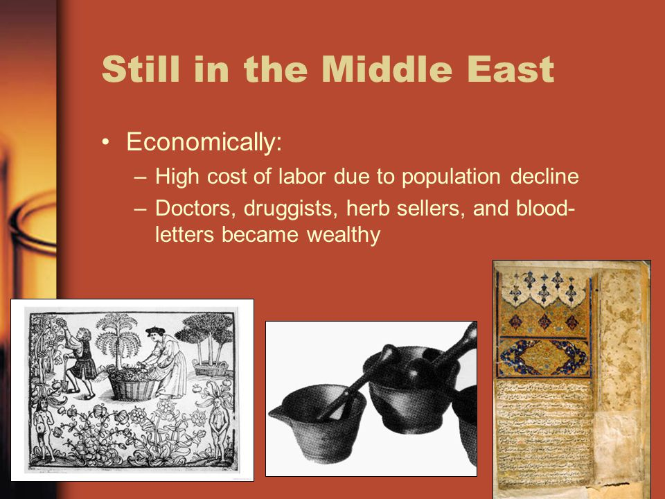 Still in the Middle East Economically: –High cost of labor due to population decline –Doctors, druggists, herb sellers, and blood- letters became weal