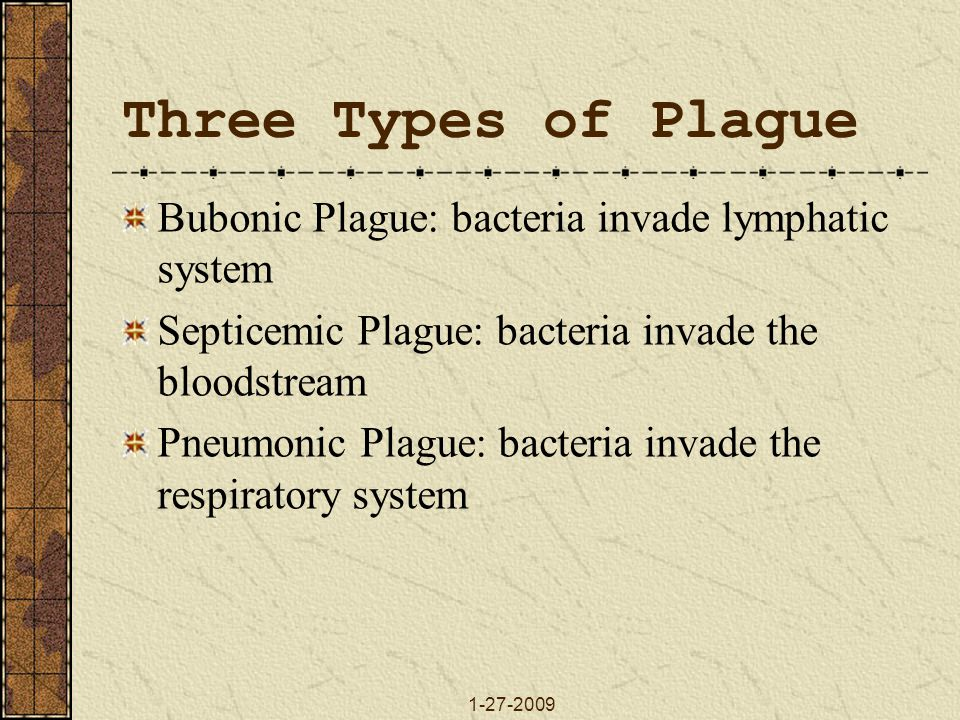 1-27-2009 Three Types of Plague Bubonic Plague: bacteria invade lymphatic system Septicemic Plague: bacteria invade the bloodstream Pneumonic Plague: bacteria invade the respiratory system