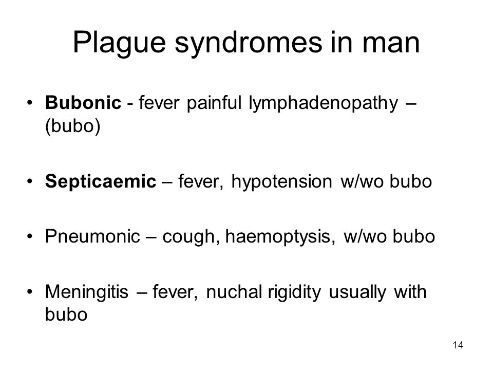 14 Plague syndromes in man Bubonic - fever painful lymphadenopathy – (bubo) Septicaemic – fever, hypotension w/wo bubo Pneumonic – cough, haemoptysis,