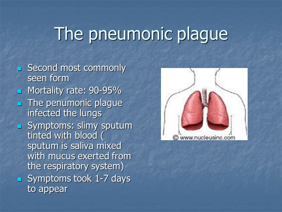 The pneumonic plague Second most commonly seen form Second most commonly seen form Mortality rate: 90-95% Mortality rate: 90-95% The penumonic plague infected the lungs The penumonic plague infected the lungs Symptoms: slimy sputum tinted with blood ( sputum is saliva mixed with mucus exerted from the respiratory system) Symptoms: slimy sputum tinted with blood ( sputum is saliva mixed with mucus exerted from the respiratory system) Symptoms took 1-7 days to appear Symptoms took 1-7 days to appear