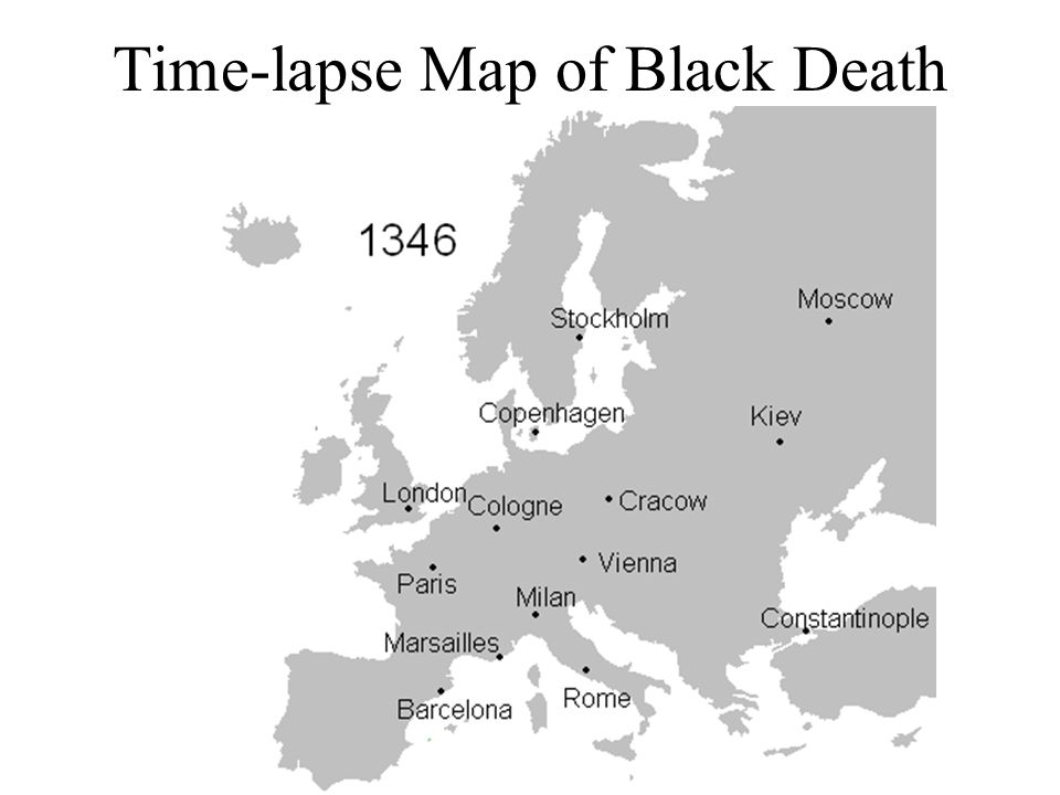 1.Some cities, such as Florence, saw death rates reach above 50% The Toggenburg Bible (1411) contains an illustration of the Black Death