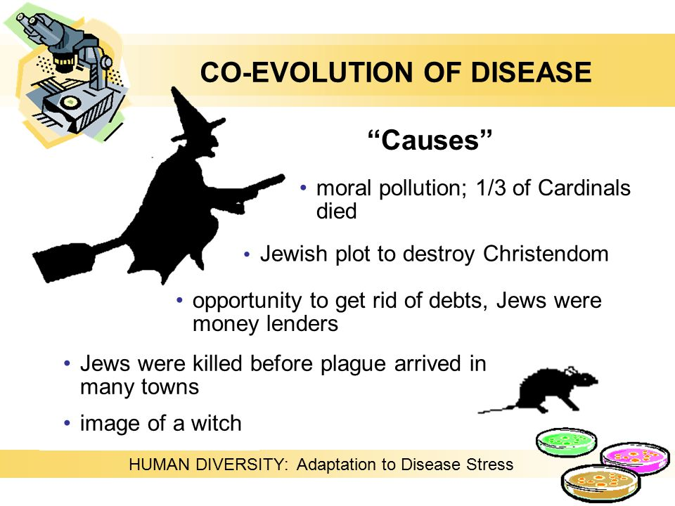 HUMAN DIVERSITY: Adaptation to Disease Stress moral pollution; 1/3 of Cardinals died Causes opportunity to get rid of debts, Jews were money lenders Jewish plot to destroy Christendom Jews were killed before plague arrived in many towns image of a witch CO-EVOLUTION OF DISEASE