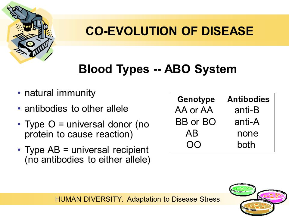 HUMAN DIVERSITY: Adaptation to Disease Stress natural immunity antibodies to other allele Type O = universal donor (no protein to cause reaction) Type AB = universal recipient (no antibodies to either allele) Blood Types -- ABO System Genotype Antibodies AA or AAanti-B BB or BOanti-A AB none OO both CO-EVOLUTION OF DISEASE