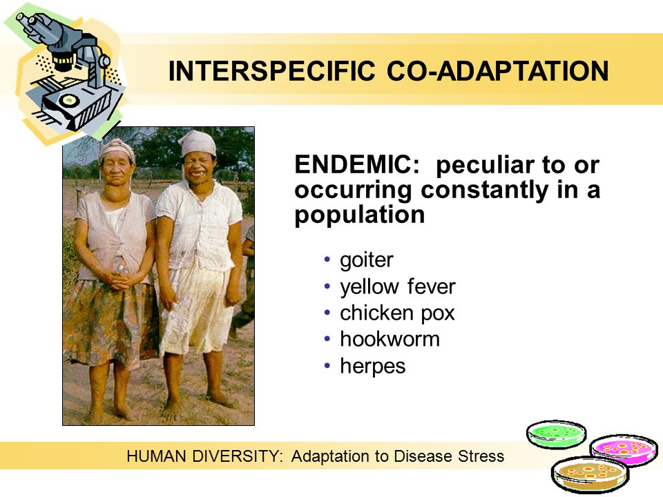 ENDEMIC: peculiar to or occurring constantly in a population goiter yellow fever chicken pox hookworm herpes HUMAN DIVERSITY: Adaptation to Disease Stress INTERSPECIFIC CO-ADAPTATION