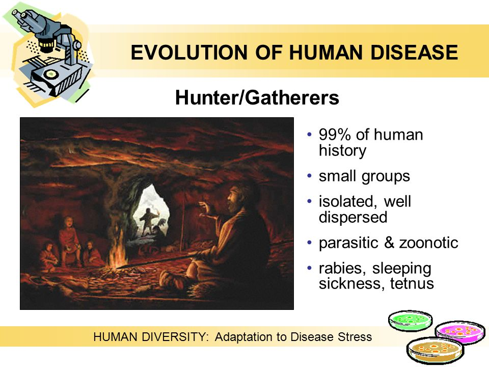 99% of human history small groups isolated, well dispersed parasitic & zoonotic rabies, sleeping sickness, tetnus Hunter/Gatherers HUMAN DIVERSITY: Adaptation to Disease Stress EVOLUTION OF HUMAN DISEASE