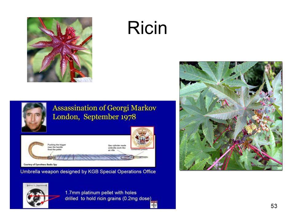Bioterroism53 Ricin