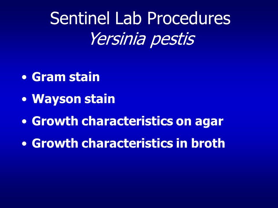 Sentinel Lab Procedures Yersinia pestis Gram stain Wayson stain Growth characteristics on agar Growth characteristics in broth