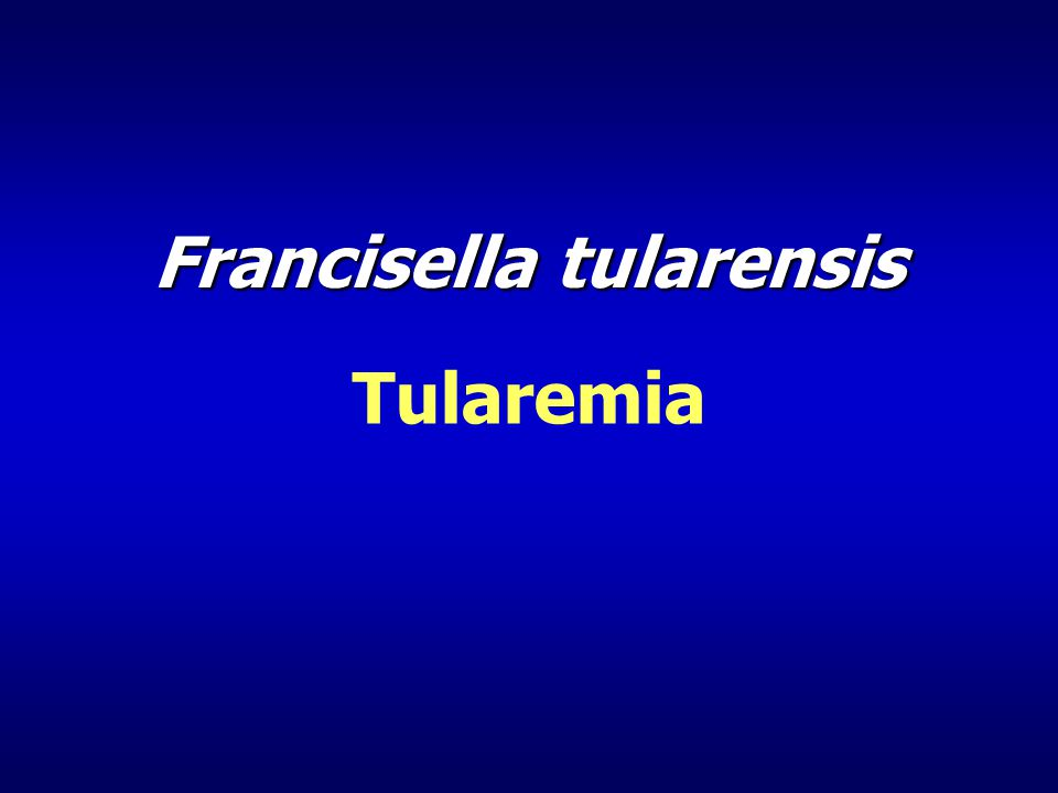 Francisella tularensis Tularemia