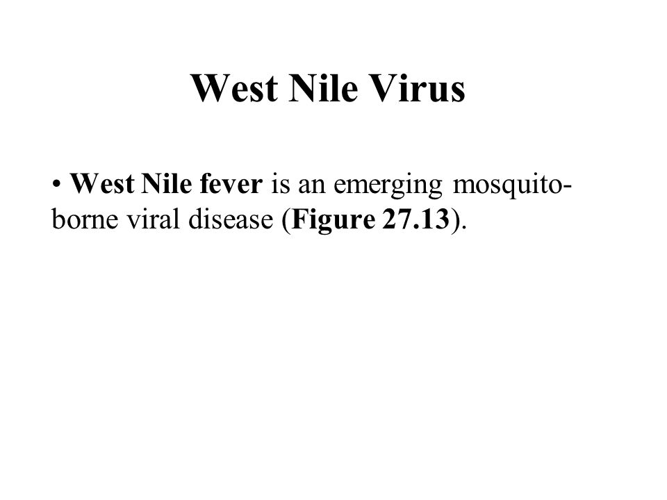 West Nile Virus West Nile fever is an emerging mosquito- borne viral disease (Figure 27.13).