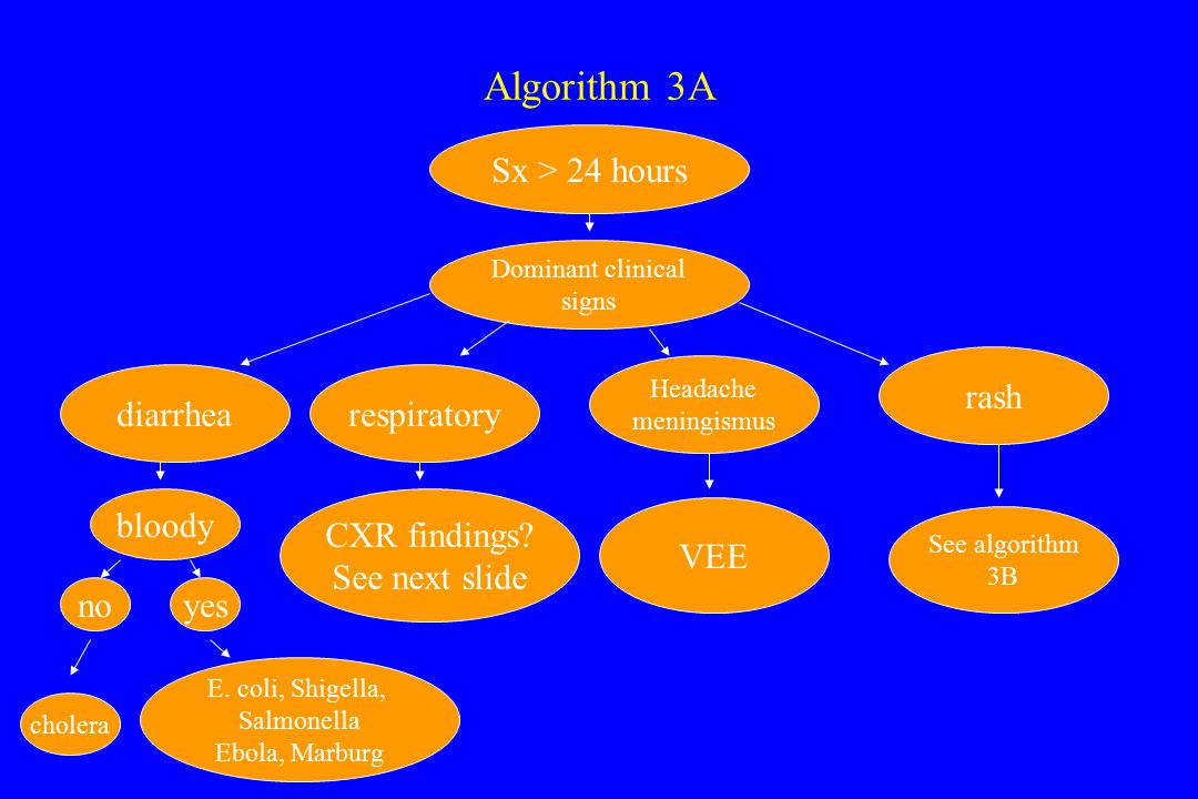 Algorithm 3A Sx > 24 hours Dominant clinical signs diarrhearespiratory Headache meningismus rash bloody noyes cholera E.