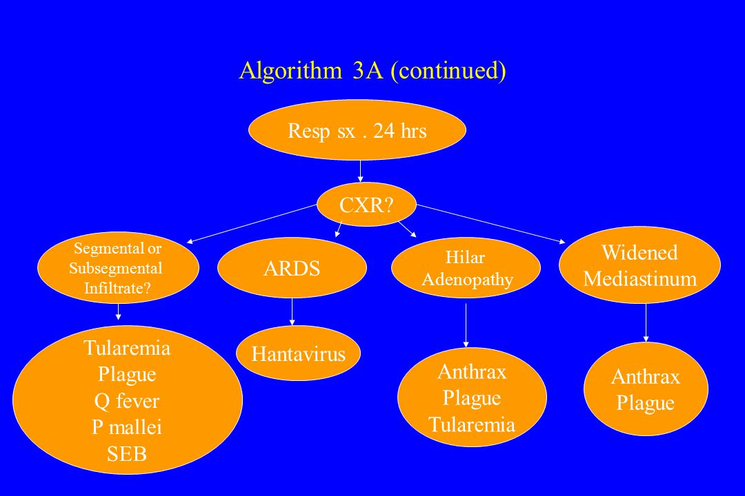 Algorithm 3A (continued) Resp sx. 24 hrs CXR. Segmental or Subsegmental Infiltrate.