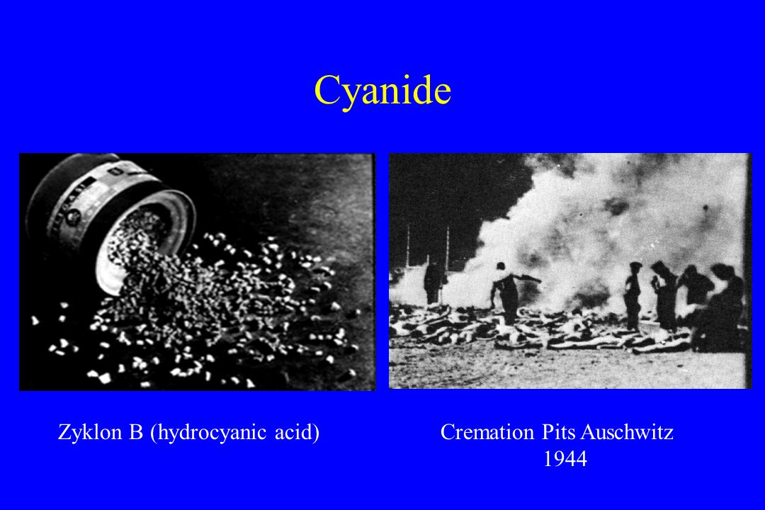 Cyanide Zyklon B (hydrocyanic acid)Cremation Pits Auschwitz 1944