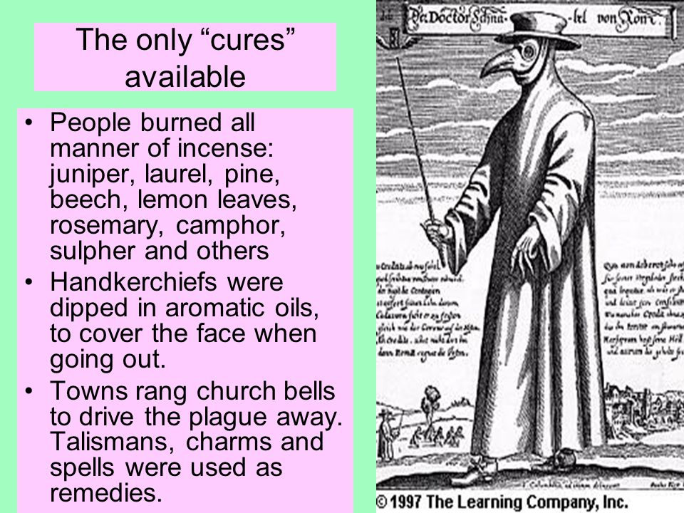 The only cures available People burned all manner of incense: juniper, laurel, pine, beech, lemon leaves, rosemary, camphor, sulpher and others Handkerchiefs were dipped in aromatic oils, to cover the face when going out.