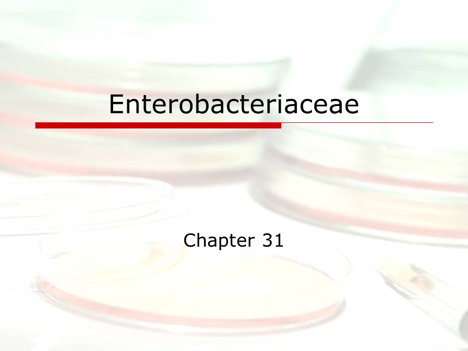 Enterobacteriaceae Chapter 31