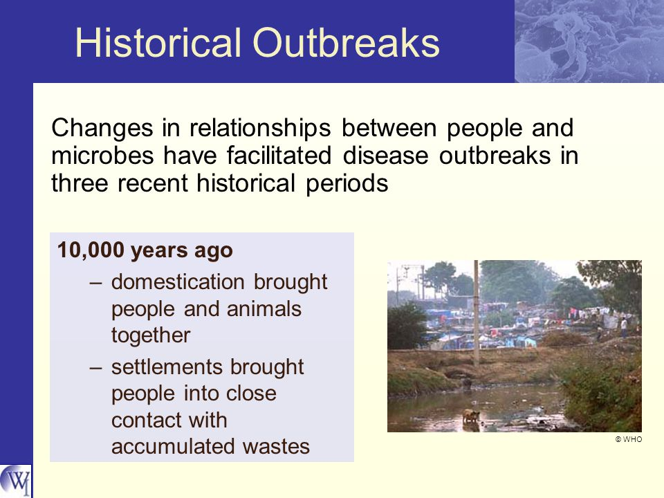 Historical Outbreaks Changes in relationships between people and microbes have facilitated disease outbreaks in three recent historical periods 10,000 years ago –domestication brought people and animals together –settlements brought people into close contact with accumulated wastes © WHO