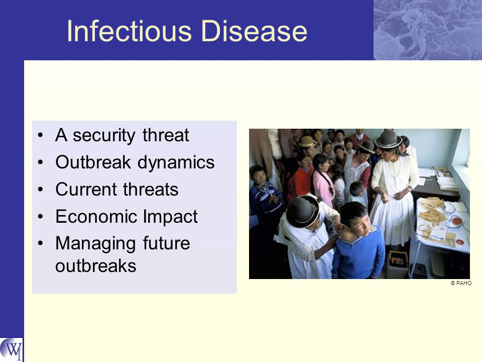 Infectious Disease A security threat Outbreak dynamics Current threats Economic Impact Managing future outbreaks © PAHO