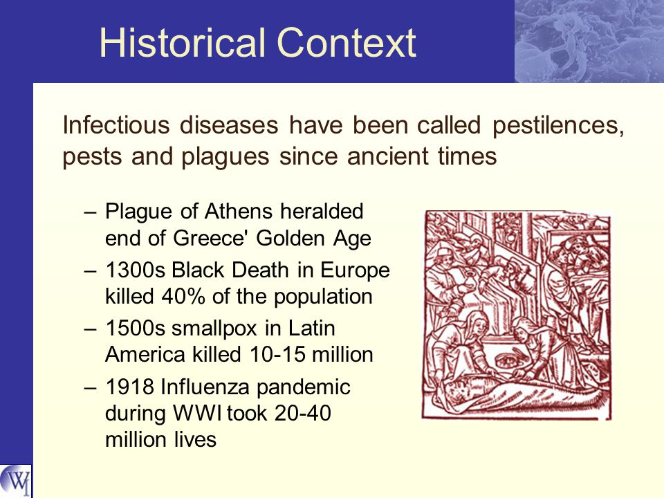 Historical Context Infectious diseases have been called pestilences, pests and plagues since ancient times –Plague of Athens heralded end of Greece Golden Age –1300s Black Death in Europe killed 40% of the population –1500s smallpox in Latin America killed 10-15 million –1918 Influenza pandemic during WWI took 20-40 million lives