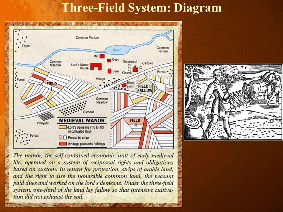 Three-Field System: Diagram
