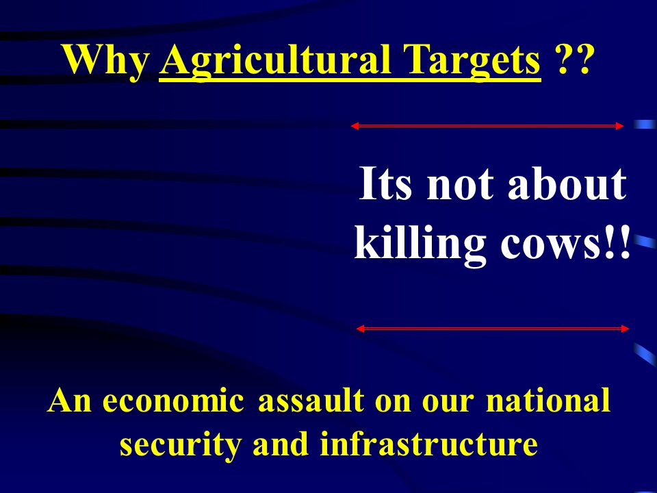 Its not about killing cows!.